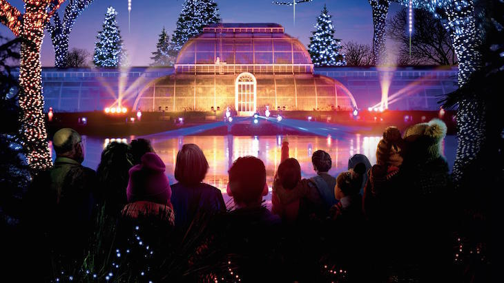 Christmas at Kew 2018 - things to do on New Year's Eve in London
