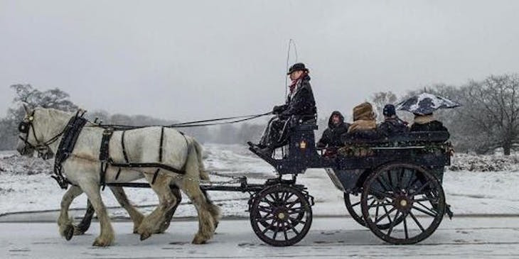 Horse-drawn carriage rides in Richmond Park: Things to do in London between Christmas and New Year 2018