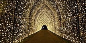 Christmas At Kew Gardens 2018: In Photos