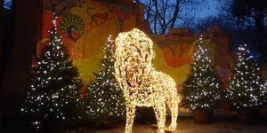 Christmas At London Zoo 2018: In Photos