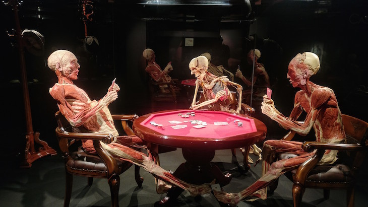 Body Worlds: what's open in London on Christmas Day