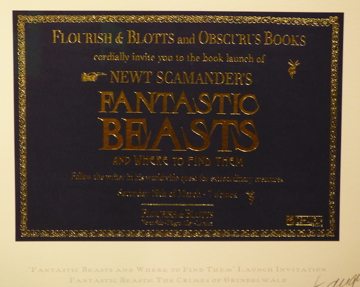 Fantastic Beasts London premiere red carpet