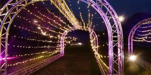In Photos: Enchanted Eltham Light Trail At Eltham Palace