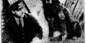 Roy - The Dog Who Refused To Leave Euston Station