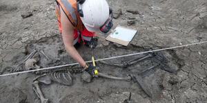 Medieval Skeleton Found Face-Down In Thames... Still Wearing Boots