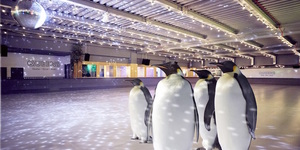Go Ice Skating With Real Penguins On Penguin Awareness Day