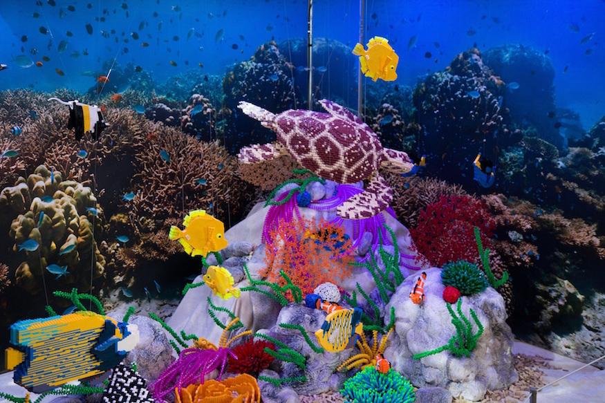 Lego aquarium.