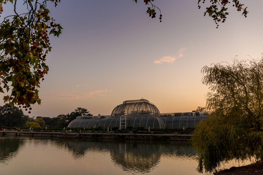 Kew Gardens at dusk