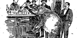 An Elephant Once Visited Ye Olde Cheshire Cheese Pub