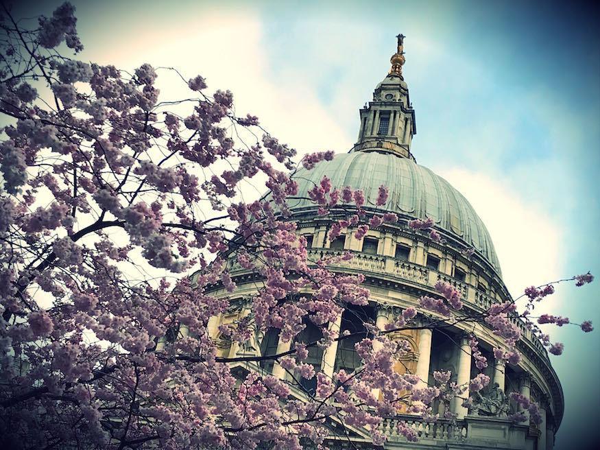 Beautiful Photos Of Cherry Blossom Season In London