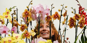 Bloomin' Lovely! See Exotic And Rare Orchids In Westminster Next Week