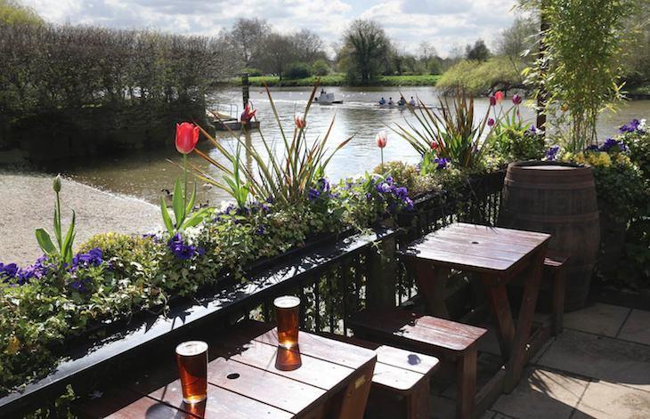 London's best beer gardens: The White Swan, Twickenham