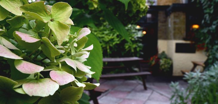 Best pub gardens in London, including The Swan in Chiswick