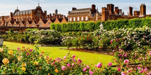 8 Places To See Beautiful Roses In Bloom In London