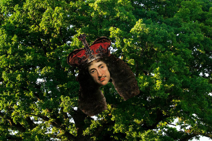 Charles II poking his head out of an oak tree
