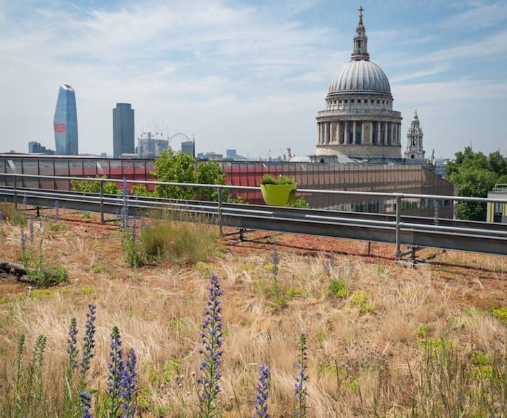 The Best Things To Do In London In Summer 2019 | Londonist