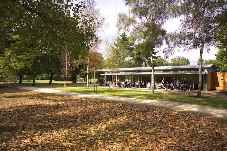 Looking for London's best park cafes? Try Pheasantry Cafe