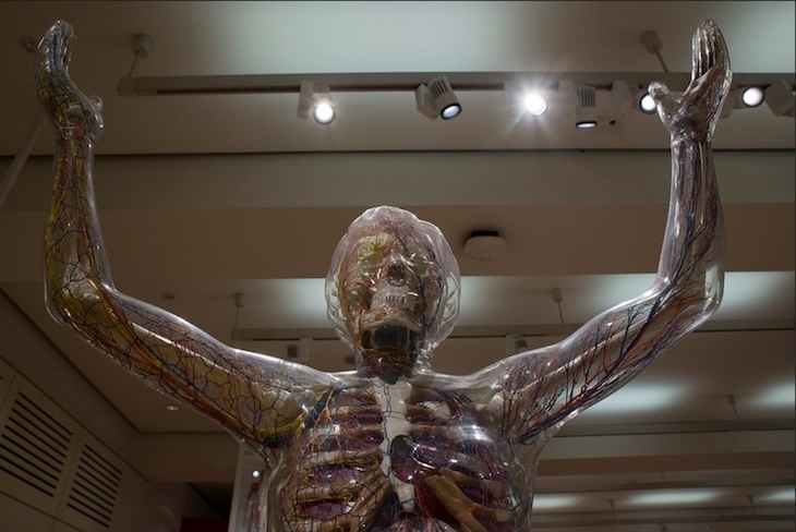 One of north London's best cultural gems is the Wellcome Collection