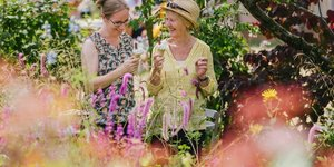 An Utterly Glorious Garden Festival Is Coming To Hampton Court Palace