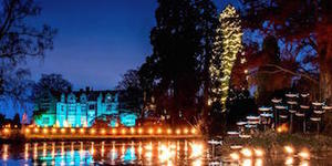 Love The Christmas At Kew Light Trail? Grab Tickets For This Enchanting Alternative
