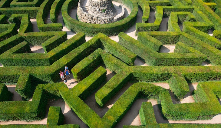 mazes, maize mazes, hedge mazes near london for a day trip: yew tree maze at leeds castle in kent