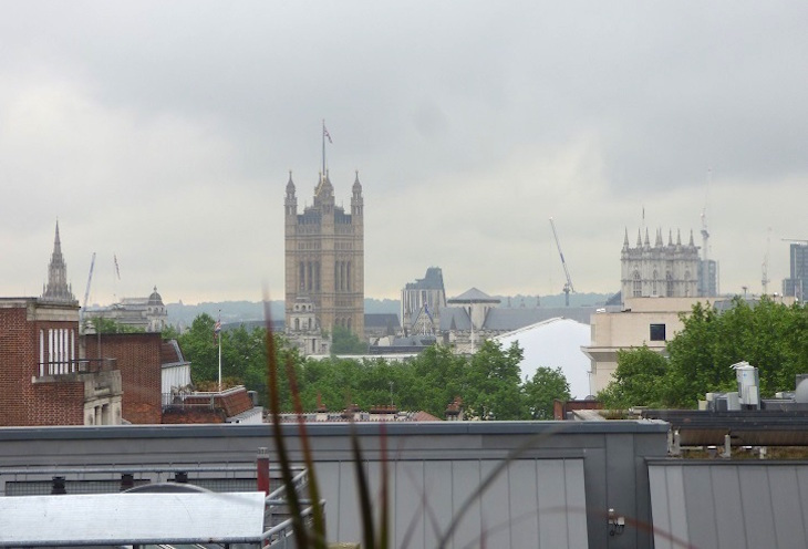 Afternoon tea at 5th View in Waterstones Piccadilly, with views towards Westminster