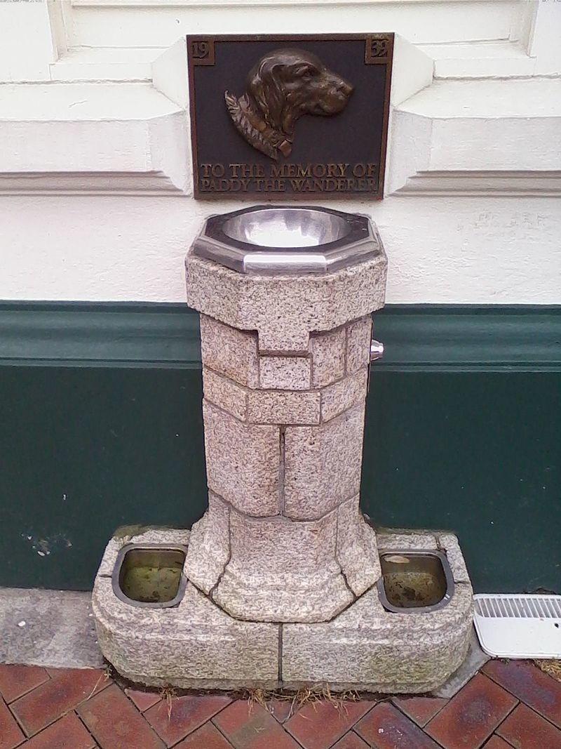 Paddy the Wanderer memorial.