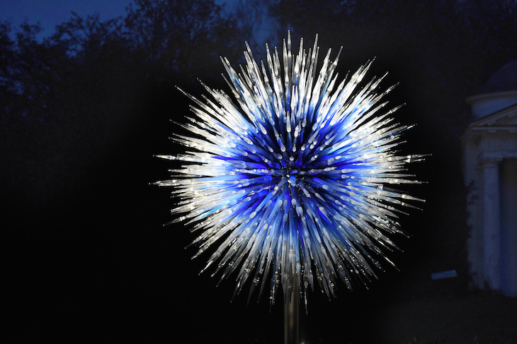 Sapphire Star by Dale Chihuly glass sculpture at Chihuly Nights at Kew Gardens