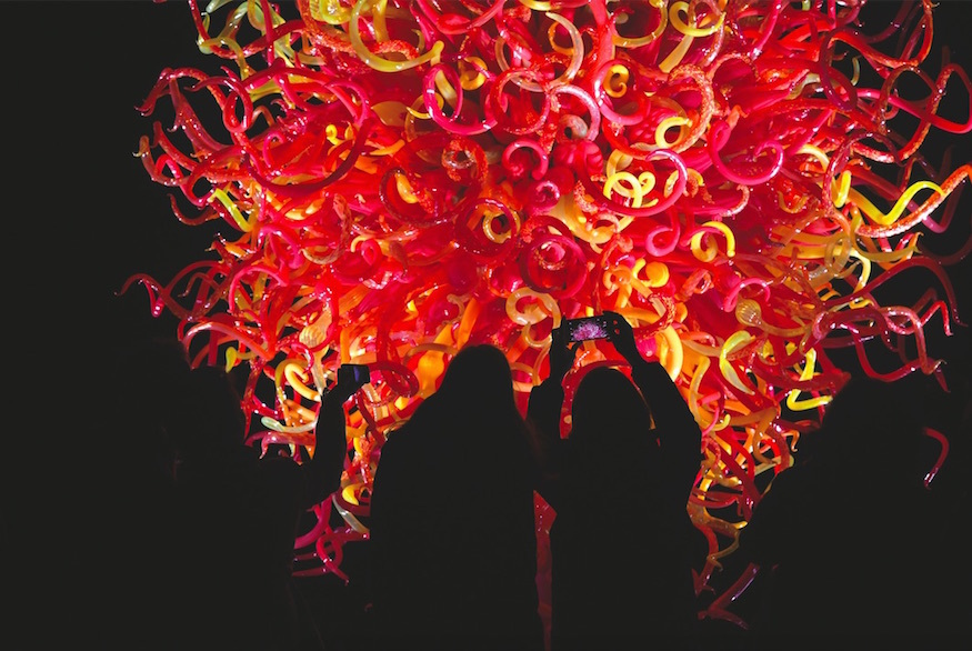 Kew Gardens Lights Up For Enchanting After-Hours Late Chihuly Nights