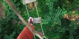 Unleash Your Wild Side At London's Most Challenging Go Ape Adventure