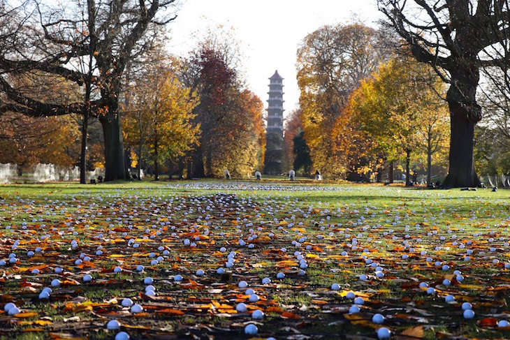 Orange leaves on trees in Kew Gardens, London, in autumn