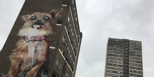 London's Top Dogs