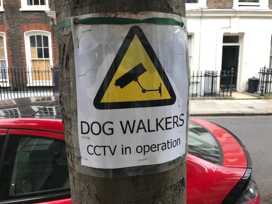 Dog walkers CCTV
