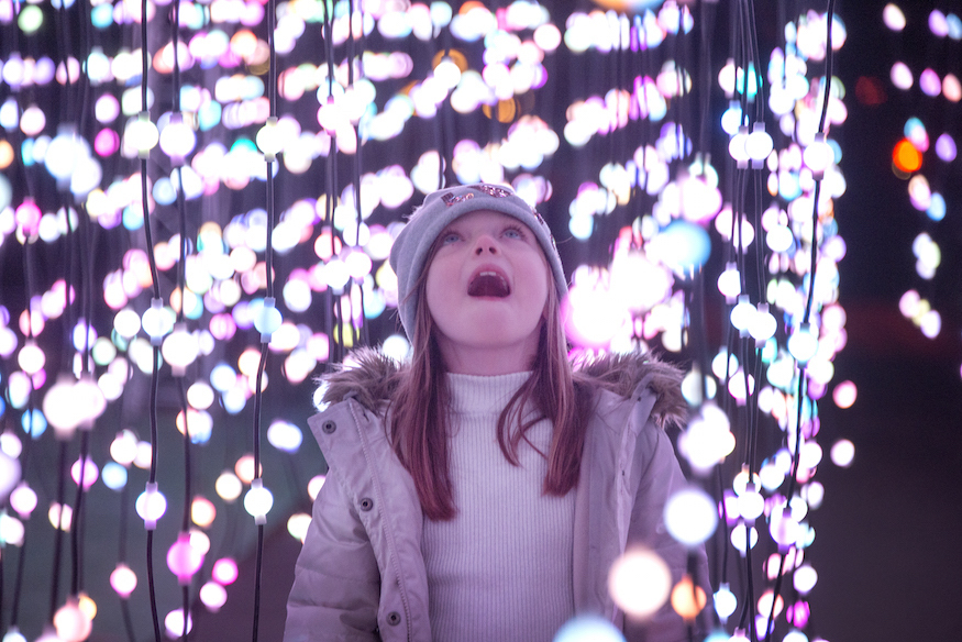 Picture A Christmas.Stand Beneath A Twinkling Waterfall Of Lights At Christmas