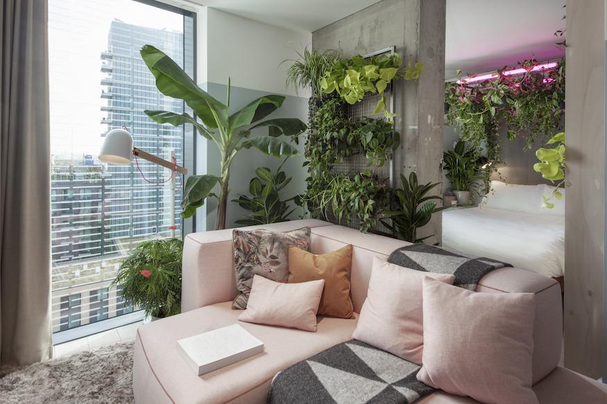 Leaf It Out! London Hotel Unveils Houseplant-Themed Suites