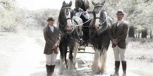 Those Horse-Drawn Carriage Rides Through Richmond Park Are Back For Christmas!