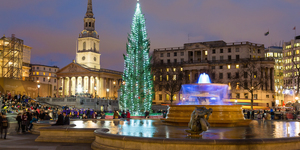 The Trafalgar Square Christmas Tree Is On Its Way To London