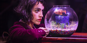 Can Amélie The Musical Live Up To The Hype Of The Film?