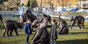A Herd Of 21 Bronze Elephants Has Appeared In Marble Arch