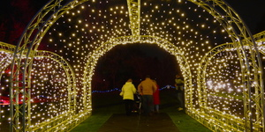 Enchanted Eltham: A First Look At The Magical Light Festival