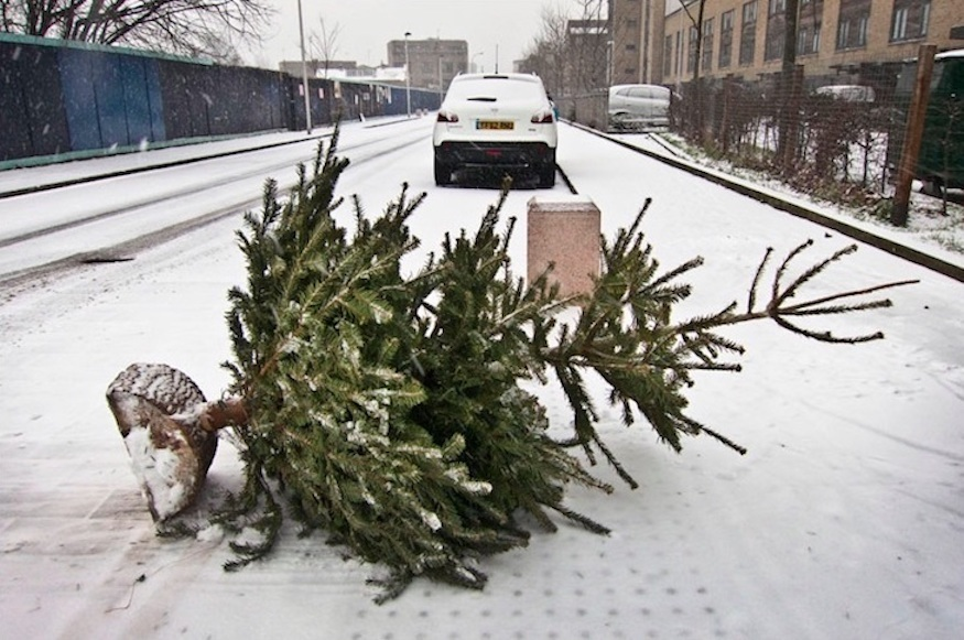 Don't dispose of your London Christmas tree in the middle of the road