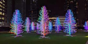 Canary Wharf Winter Lights: Illuminating Photos Of This Year's Festival