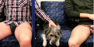10 Cheeky Photos Of Londoners Riding The Tube Without Trousers This Weekend