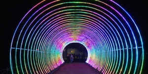 13 Glowing Photos Of Lightopia At Chiswick House And Gardens