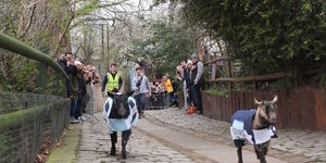 Watch Farmyard Animals Go Head To Head At This Year's Spitalfields Goat Race