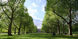 All Of London's Royal Parks Are Still Open