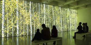 Hayward Gallery Takes Us Back To Nature In A Tree-mendous Exhibition