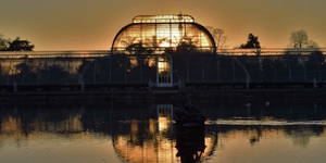 Kew Gardens Has Now Closed