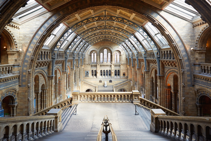 Natural History Museum, empty