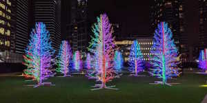 A New Lights Festival Is Coming To Canary Wharf For Two Months This Winter
